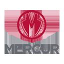 Mercur Teknoloji logo