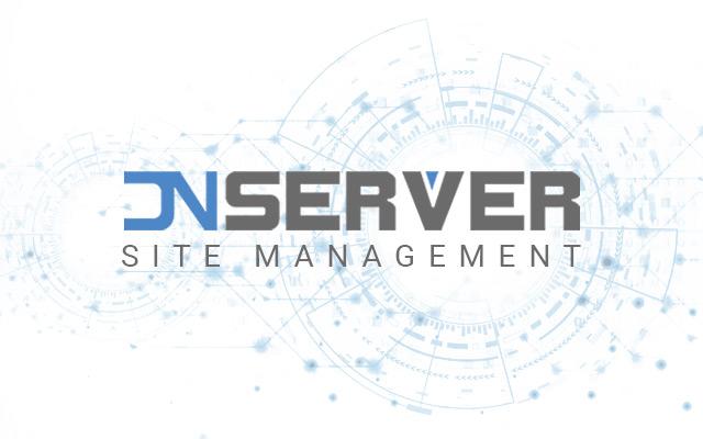 DN Server (DNS) logo